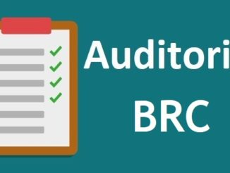 auditoria BRC interna