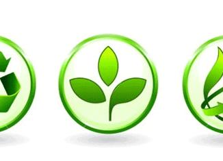 conceptes de la gestió ambiental